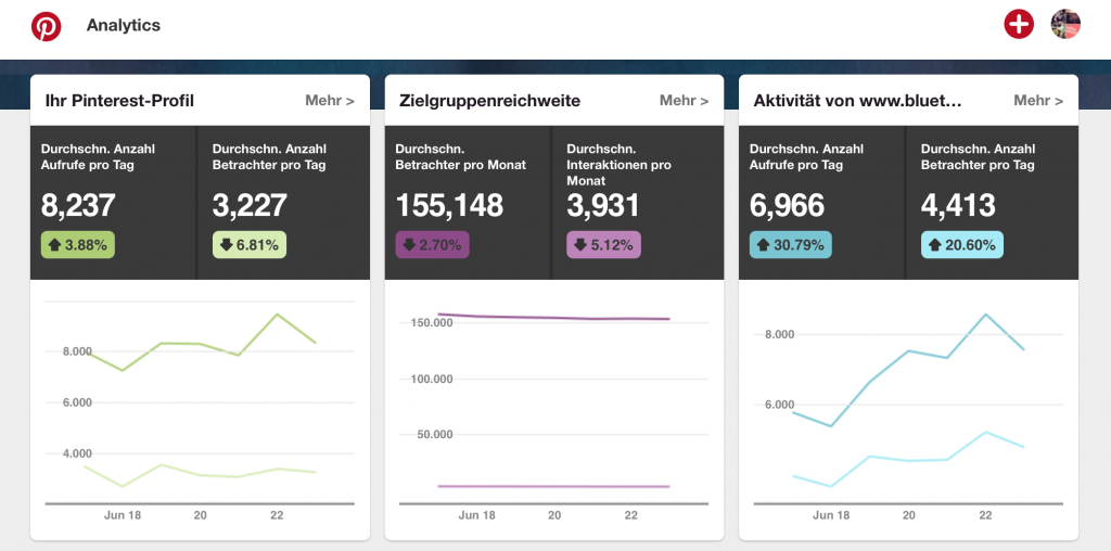 Screenshot Pinterest | Pinterest Analytics, Daten analysieren & auswerten